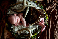 Chandler's Newborn Session